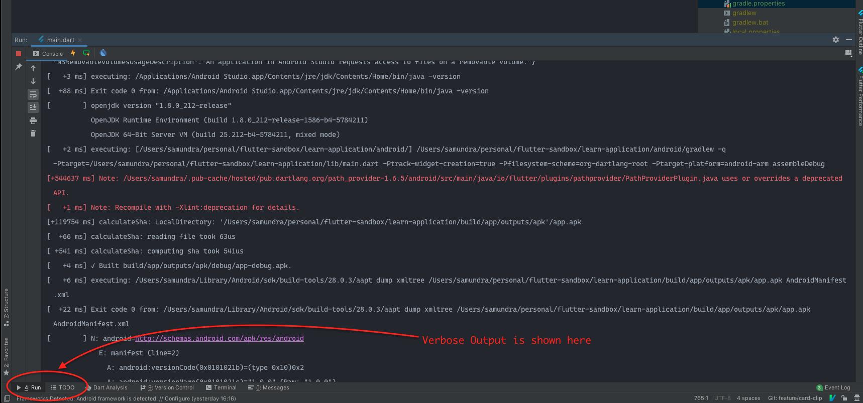 Verbose output of Flutter Run Project